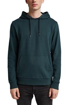 Picture of Sweatshirt hoodie in 100% cotton